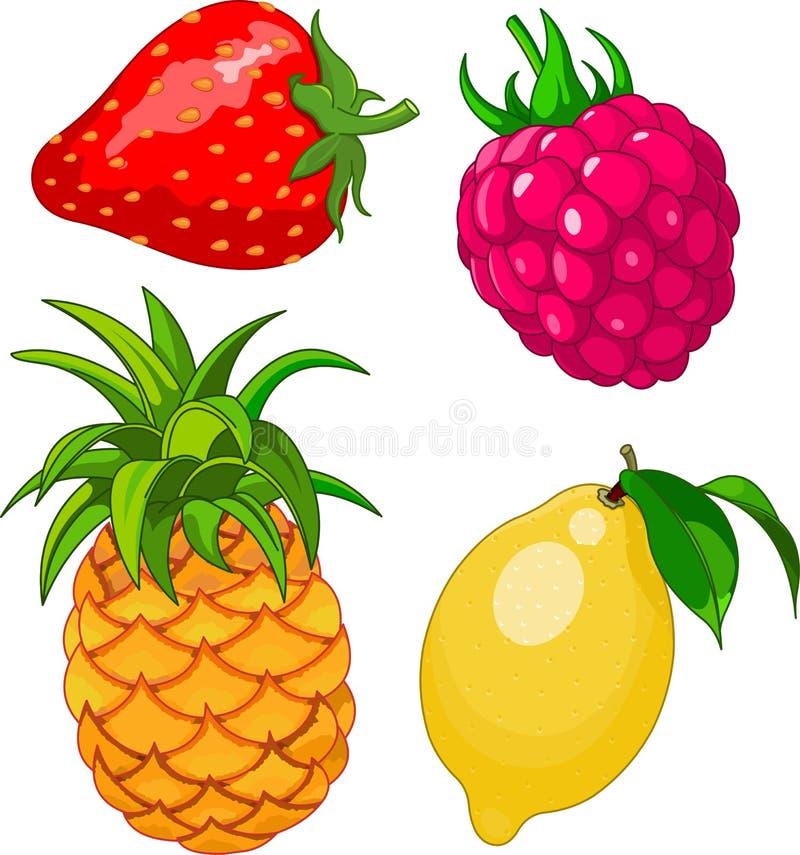 Het fruitreeks van het beeldverhaal vector illustratie