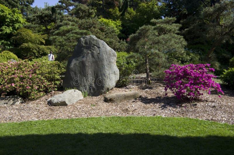 Het gazon van het binnenplaatsontwerp en rots en bomen royalty-vrije stock foto's