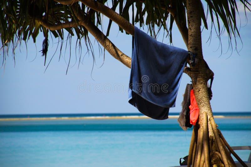 Het geïsoleerde blauwe handdoek hangen in palm met vage horizon van blauwe eindeloze oceaan op Phuket, Nayang-strand, Thailand stock fotografie