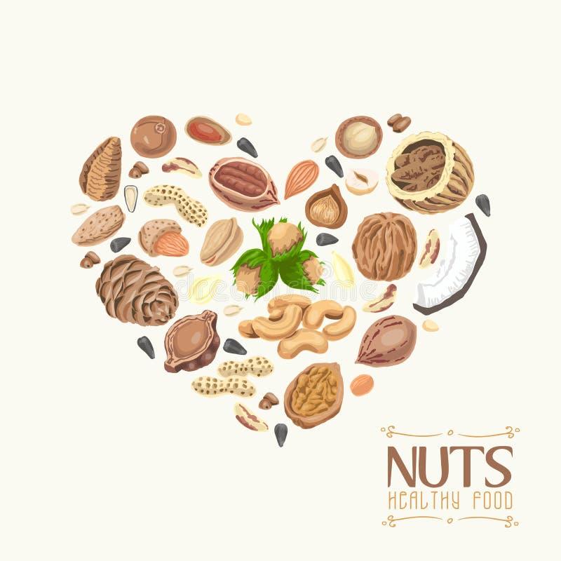 Het geïsoleerde hart van noten en zaden vector illustratie