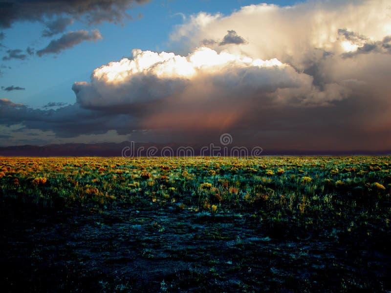 Download Het gebied stock foto. Afbeelding bestaande uit woestijn - 25320