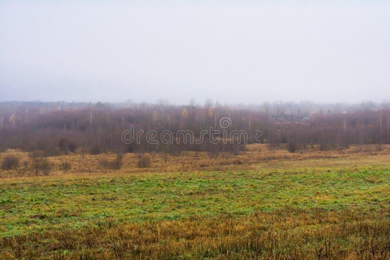 Het gebied en de heuvels met droog gras en het fokken, het bos zijn dekking stock fotografie
