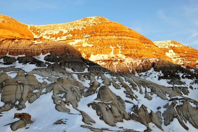 Het gebied van Alberta badlands stock fotografie