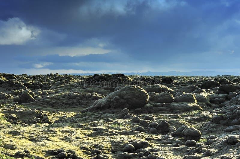 Het gebied van de lava in Eldhraun royalty-vrije stock foto's