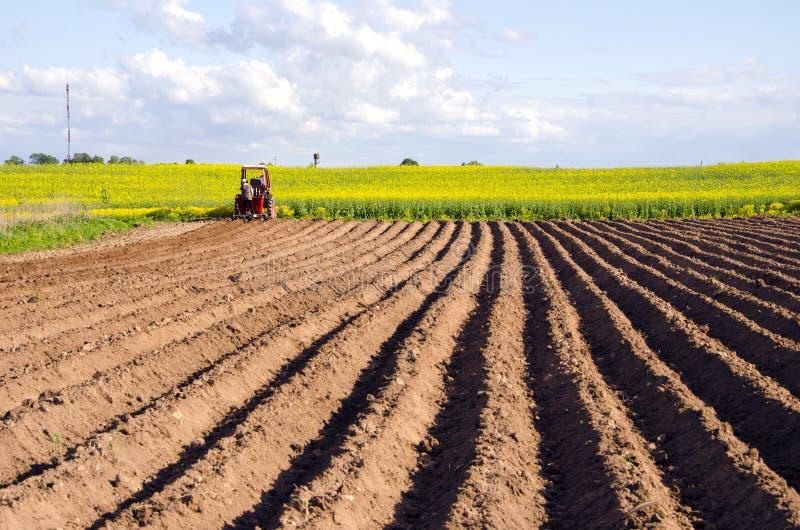Het gebied van de lente met bebouwing en tractor stock foto's