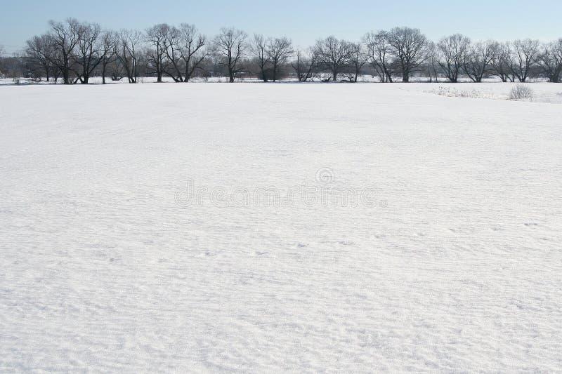 Het gebied van de sneeuw royalty-vrije stock afbeeldingen