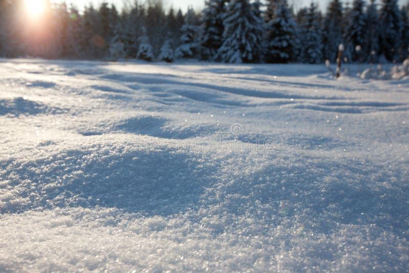 Het gebied van de sneeuw royalty-vrije stock foto's