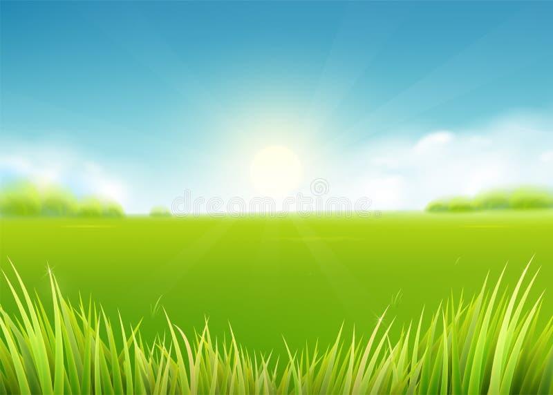 Het gebied van de de zomerweide Aardachtergrond met zon, zonnige stralen, graslandschap royalty-vrije illustratie