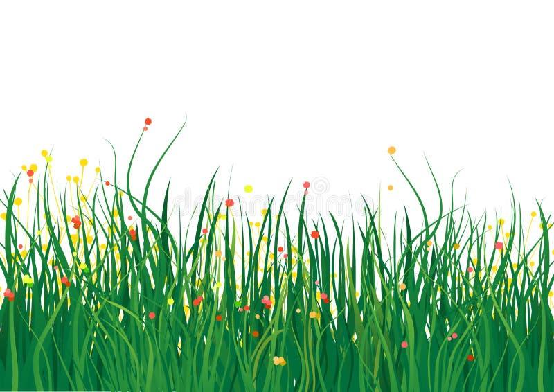 Het gebied van het gras stock illustratie