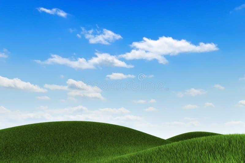 Het Gebied van het gras vector illustratie