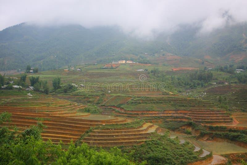 Het gebied van het rijstterras in Sapa, Sapa, Lao Cai royalty-vrije stock afbeelding