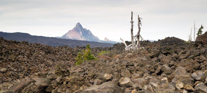 Het Gebied van MT Washington Cascade Range Ancient Lava van de Mckenziepas royalty-vrije stock fotografie