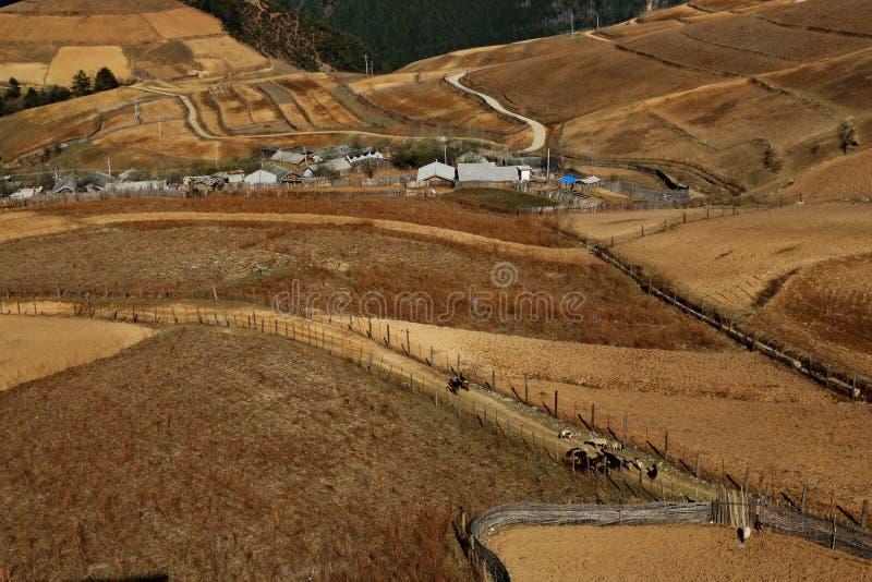 Het gebied van Shangrila, Yunnan, China stock foto