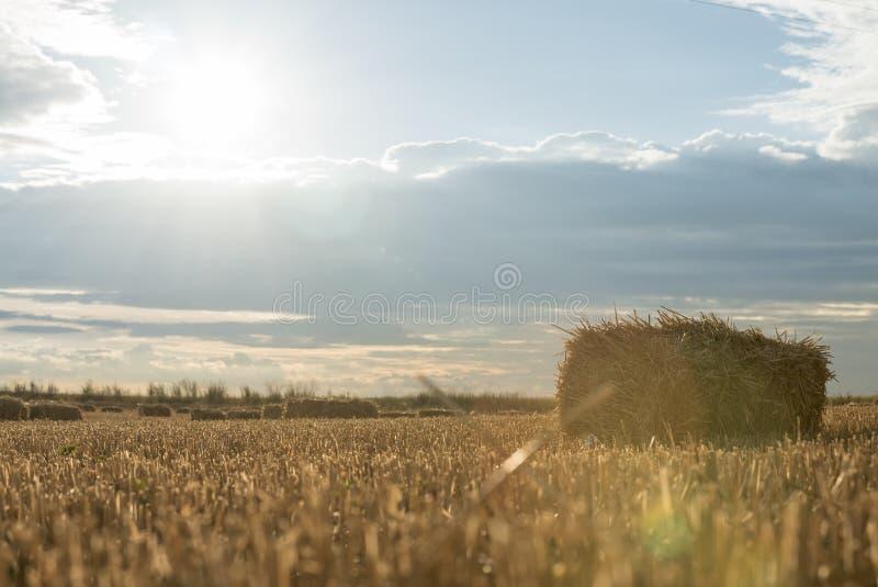 Het gebiedslandbouwbedrijf van de zonsondergang hey zomer stock afbeeldingen