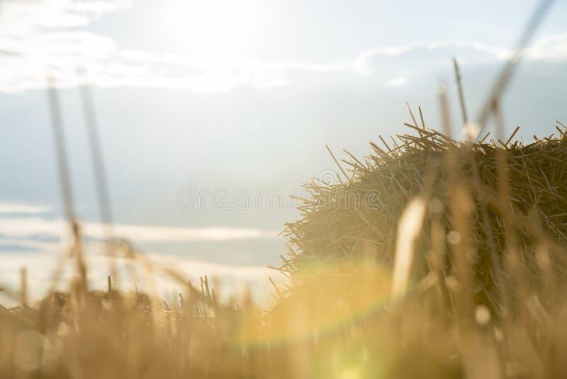 Het gebiedslandbouwbedrijf van de zonsondergang hey zomer royalty-vrije stock fotografie