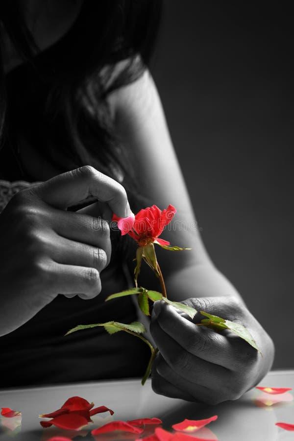 Het gebroken hartmeisje plukken nam bloemblaadjes toe royalty-vrije stock foto's