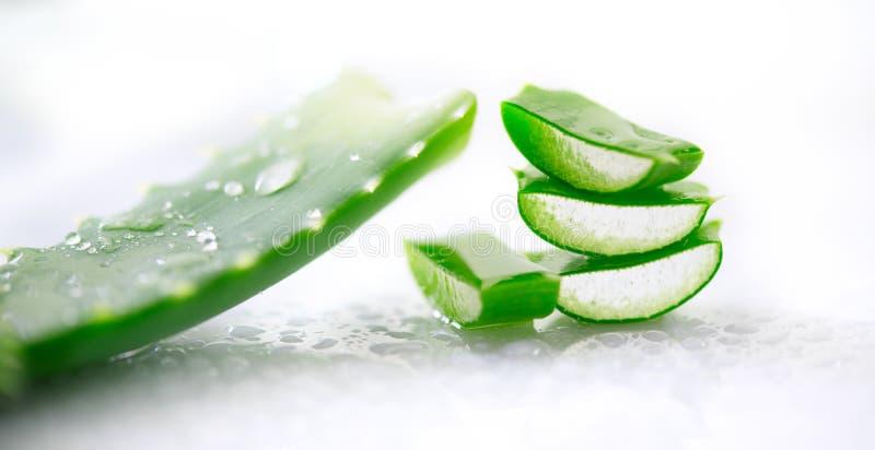 Het gelclose-up van aloëvera Gesneden natuurlijke organische de vernieuwingsschoonheidsmiddelen van Aloevera, alternatieve genees royalty-vrije stock foto's