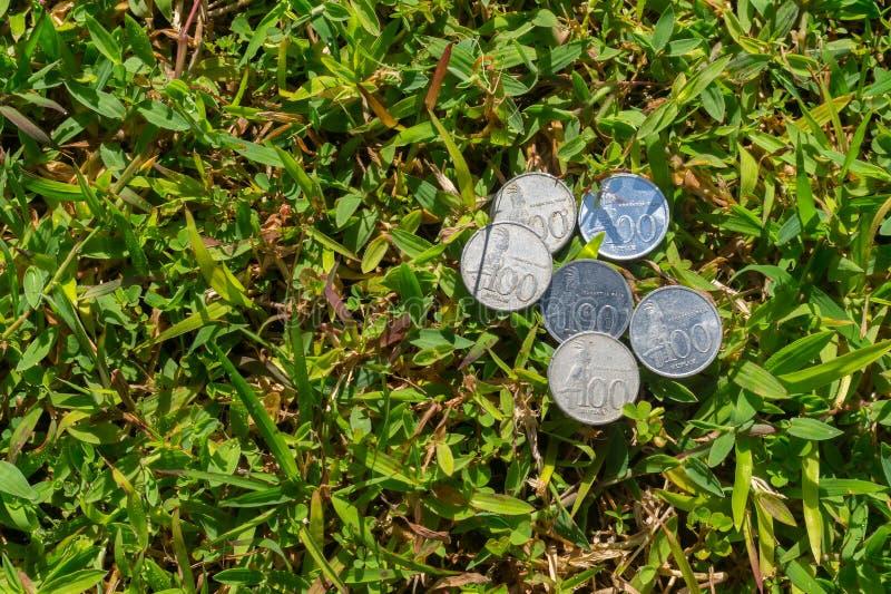 Het geld van het Roepiemuntstuk op groen gras stock afbeelding