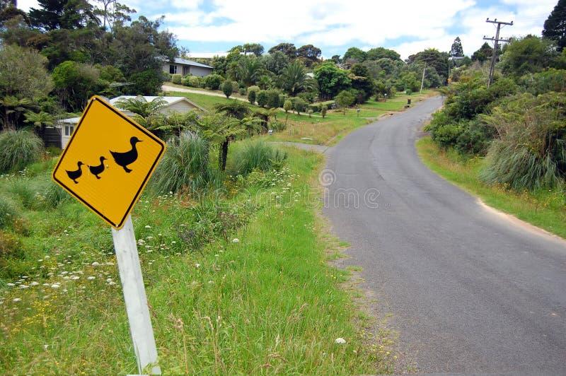 Het gele plattelandsgebied van eendverkeersteken stock fotografie