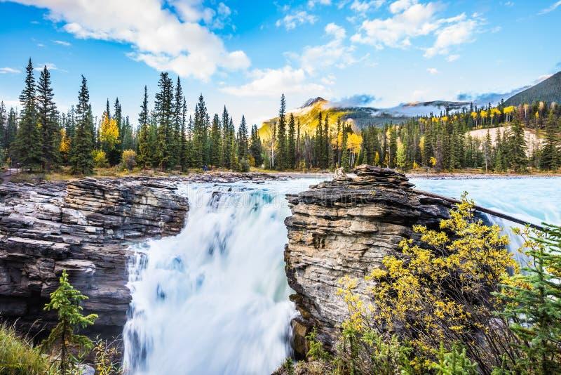 Het gelijk maken in Jasper National Park stock afbeelding