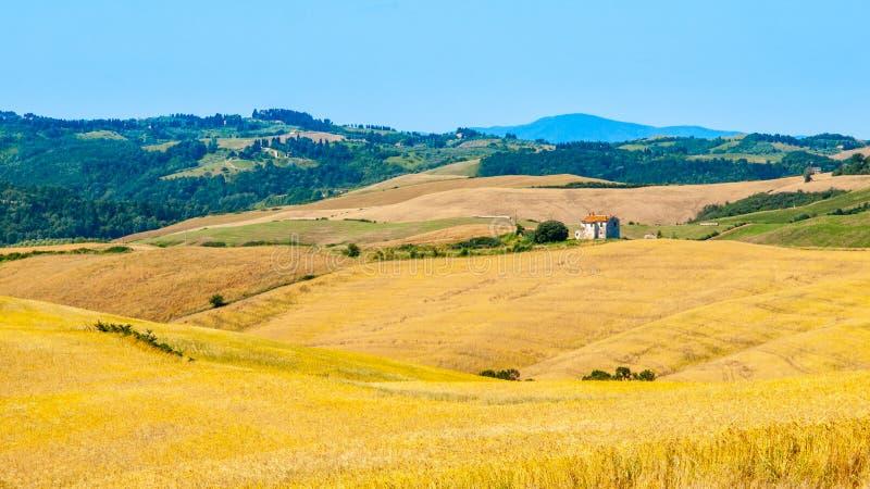 Het gelijk maken in Toscanië Hilly Tuscan-landschap met de steeg van cipresbomen en landbouwbedrijfhuis, Italië stock foto