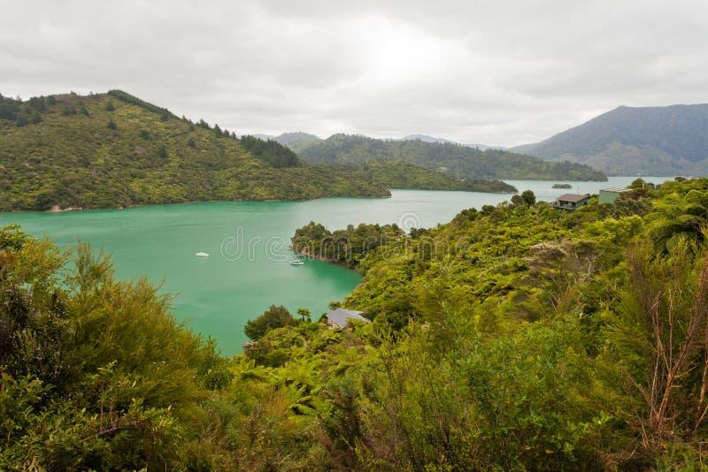 Het Geluid van Kenepuru van Marlborough Geluiden, Nieuw Zeeland royalty-vrije stock foto