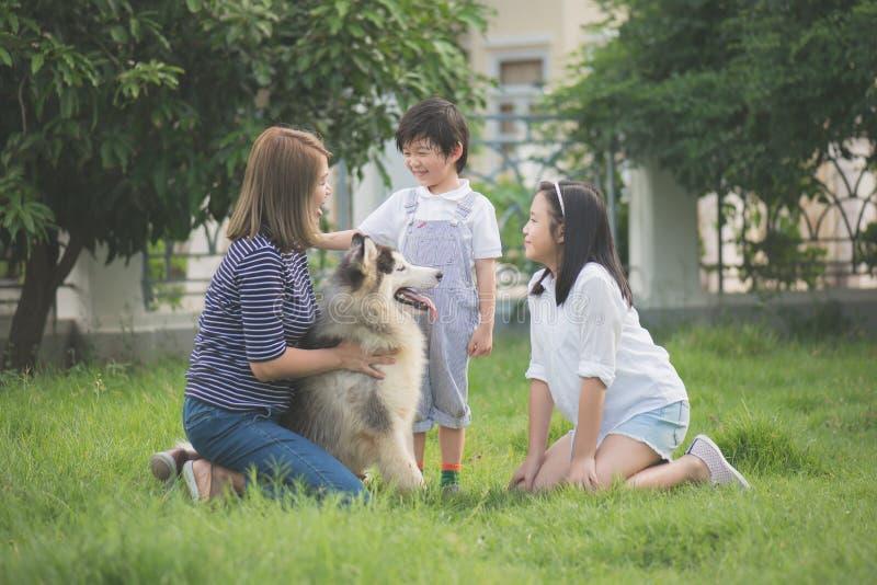 Het gelukkige Aziatische familie spelen met Siberische schor hond stock foto's