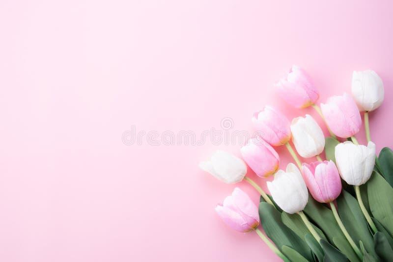 Het gelukkige concept van de moedersdag Hoogste mening van witte en roze tulpenbloemen op roze pastelkleurachtergrond Vlak leg royalty-vrije stock foto's