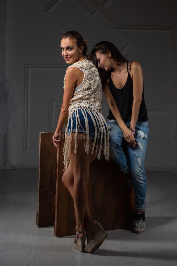 Het gelukkige dame twee stellen in een studio stock afbeelding