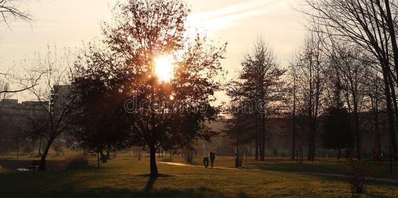 Het gelukkige en kalme leven in een natuurreservaat, platteland bij zonsondergang royalty-vrije stock afbeeldingen