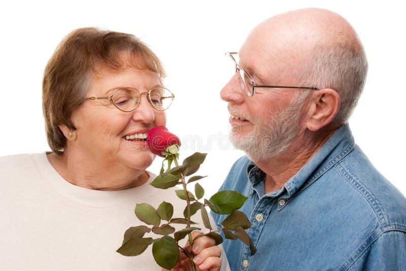 Het gelukkige Hogere Paar met Rood nam toe royalty-vrije stock foto