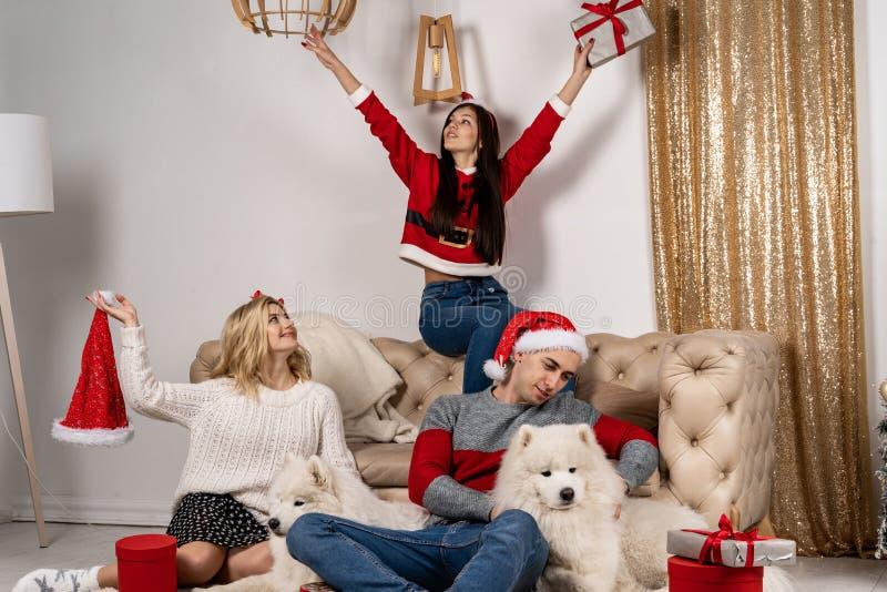 Het gelukkige Kerstmis vieren van jongeren met honden en giften stock afbeelding