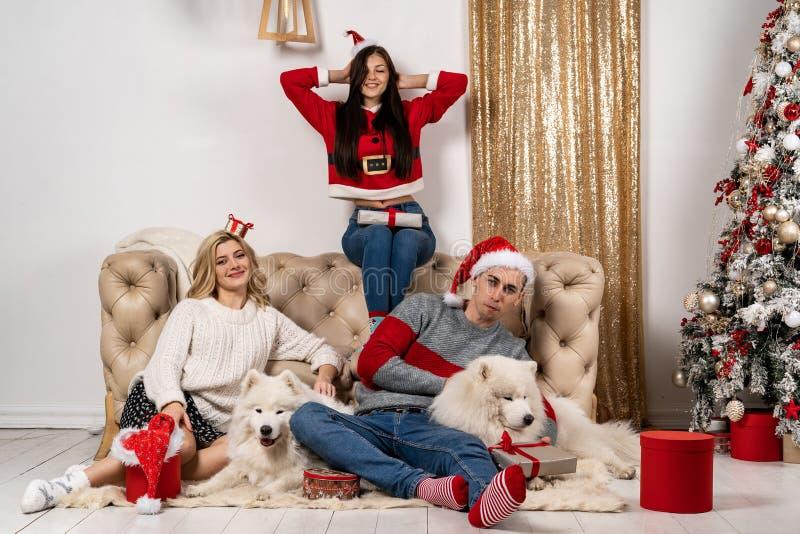 Het gelukkige Kerstmis vieren van jongeren met honden en giften royalty-vrije stock afbeelding