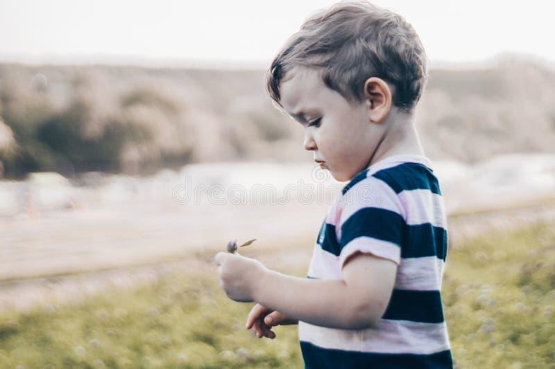 Het gelukkige kind, weinig jongen kijkt neer, peinzende blik en holding in handen de groei in openlucht Ruimte voor tekst Gestemd stock fotografie