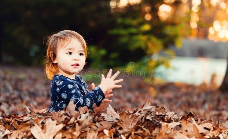 Het gelukkige peutermeisje spelen in een stapel van dalingsbladeren bij zonsondergang stock fotografie