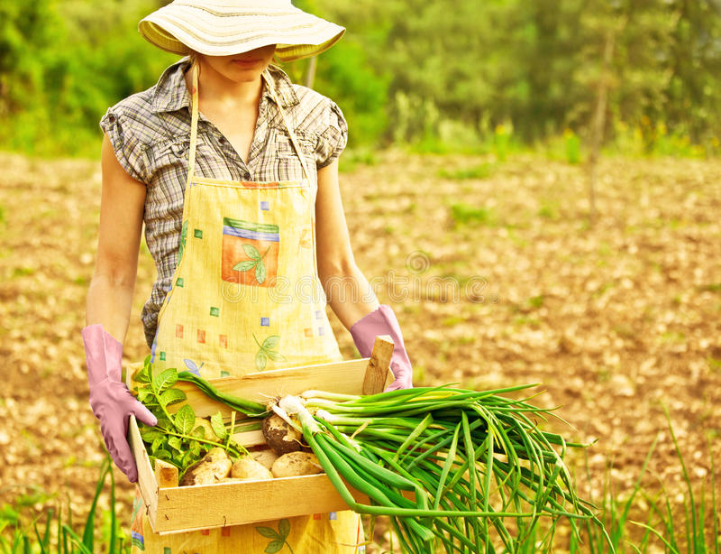 Het gelukkige tuinman werken stock afbeeldingen