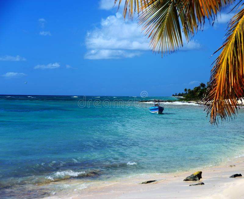 Het gemeten gewone leven op het Eiland Saona Dominikana, rust onder kokospalmen op een zandig strand dichtbij turkoois Caraïbisch stock afbeeldingen