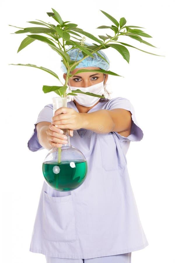 Het genetische onderzoek van de wetenschapper royalty-vrije stock foto