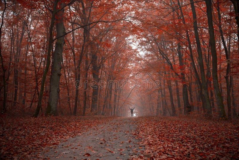 Het genieten van de van kleurrijke herfst royalty-vrije stock foto