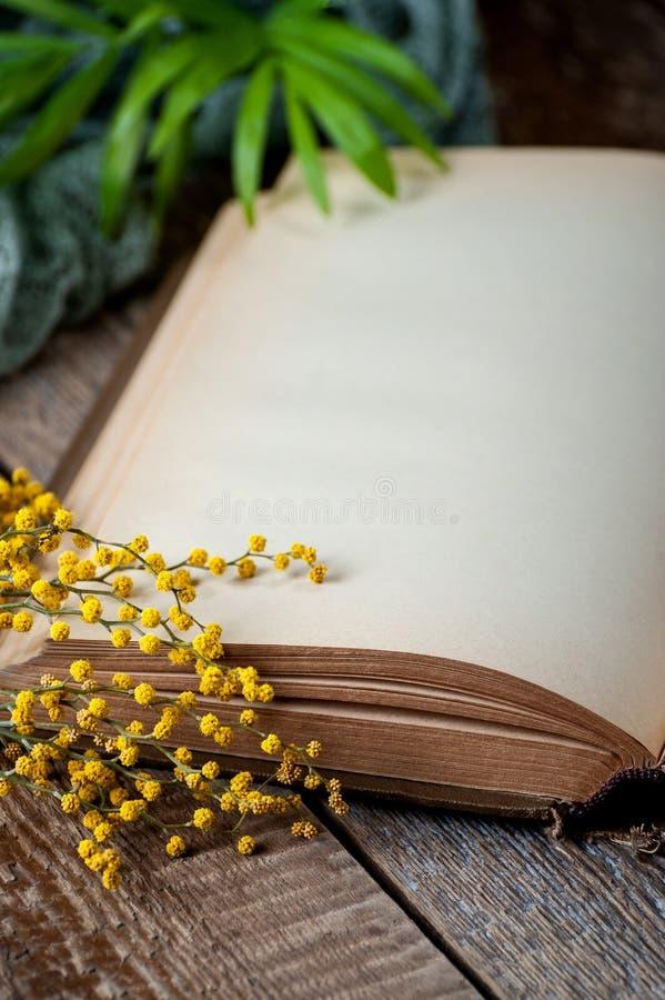Het geopende boek met blanco pagina's op een oude houten lijst met mimosa bloeit royalty-vrije stock afbeelding