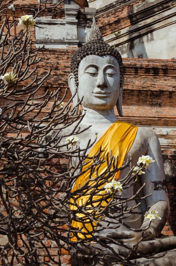Het geruïneerde Beeldhouwwerk van Boedha (Ayutthaya, Thailand) stock foto's