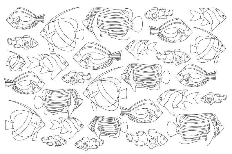 Het geschetste koraal vist horizontale kleurende pagina Tropische vissen kleurende kaart royalty-vrije illustratie