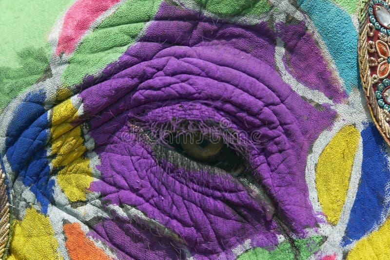 Het geschilderde Oog van de Olifant stock fotografie