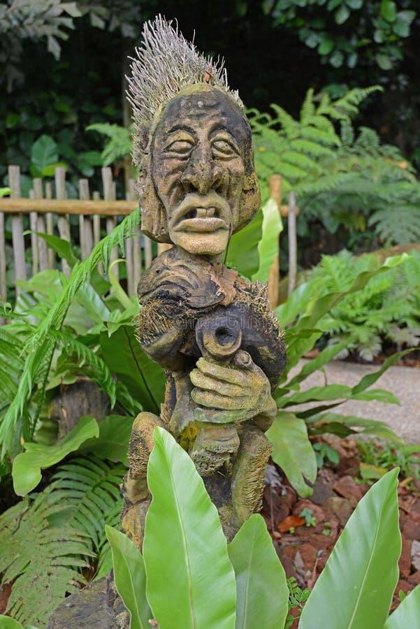 Het gesneden gezicht van een stammengod maakte van een tropische noot i de wildernismilieu van Na Singapore royalty-vrije stock afbeelding