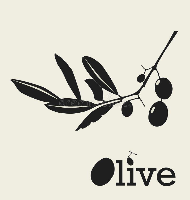 Gestileerde olijftak royalty-vrije illustratie