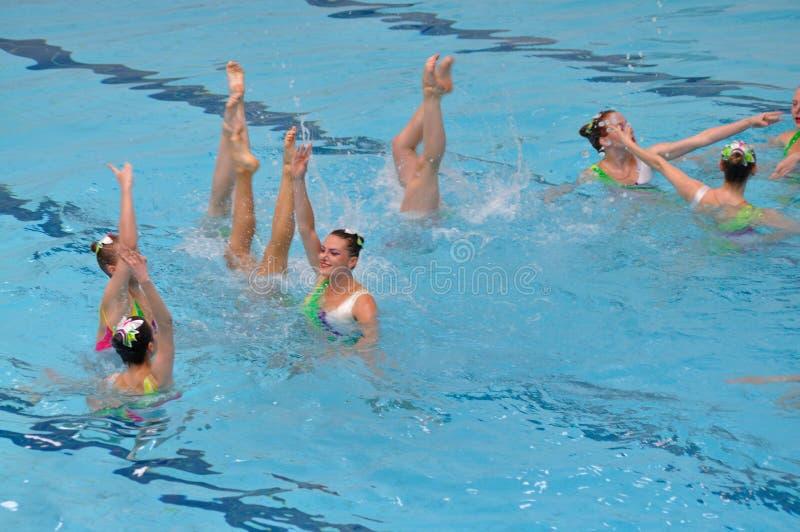 Het gesynchroniseerde zwemmen stock foto
