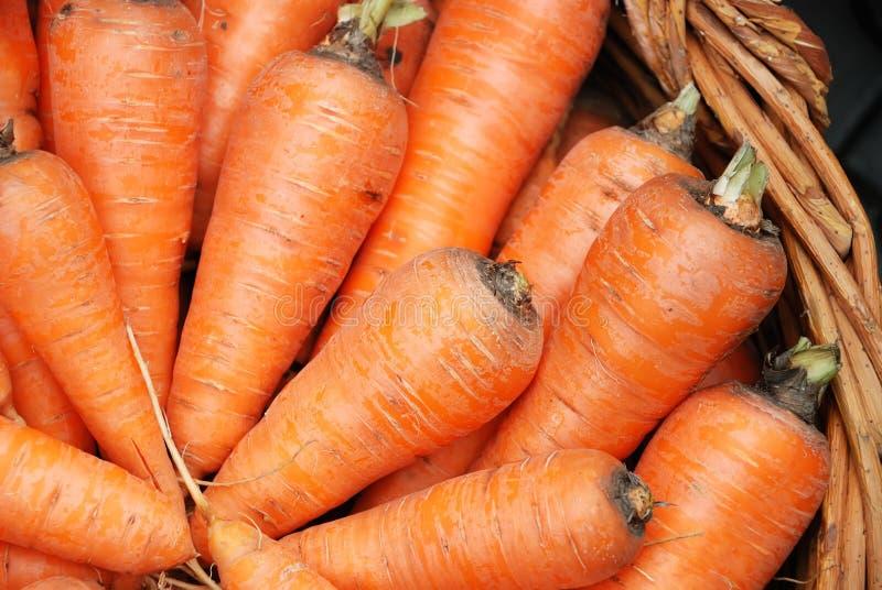Het gewas van wortelen in een mand stock foto's