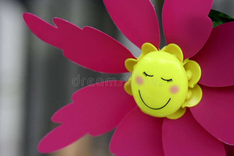 Het gezicht van de glimlach stock afbeelding