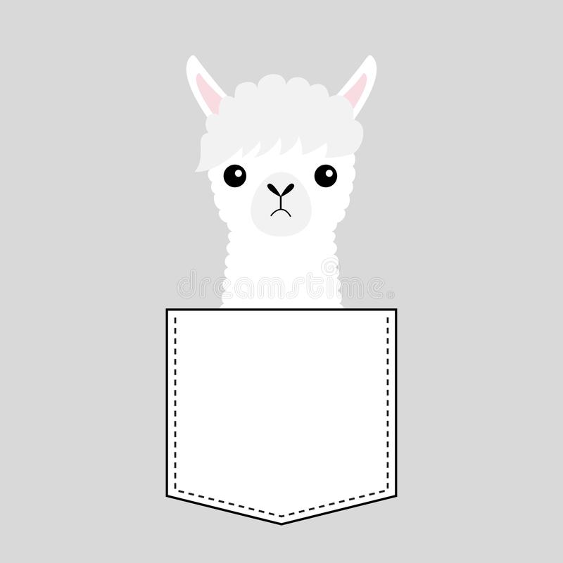 Het gezichtshoofd van de alpacalama in de zak Leuke beeldverhaaldieren Kawaiikarakter Vlak ontwerp Witte en zwarte kleur Sluit om vector illustratie