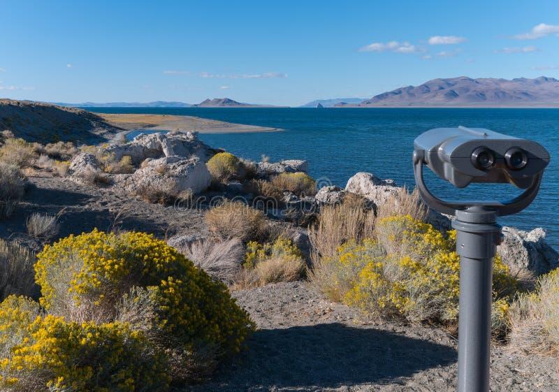 Het Gezichtspunt van de popcornrots bij Piramidemeer, Nevada stock foto's